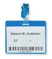 Бейдж 90х60мм DURABLE пластик клип (25шт) синий '8106-06